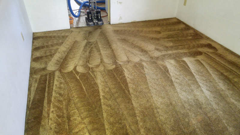 The One Carpet Upholstery Cleaning The One